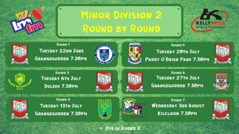 Division 2 for Gaeil Colmcille Minors